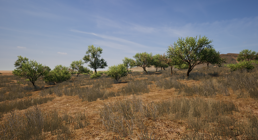 trees-900x488.png